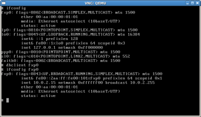 dhclient at freebsd